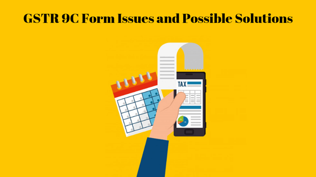 GSTR 9C Form Filing Issues