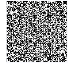 E-Invoicing Sample QR Code